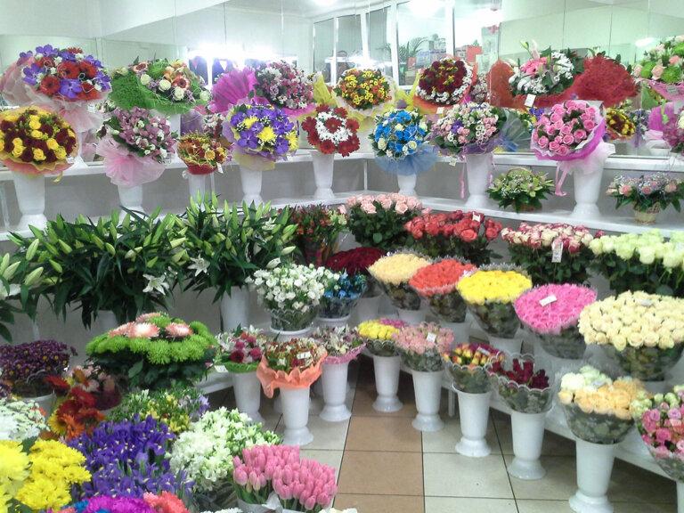 Купить магазин цветов в москве 24 часа, цветы совхоз имени