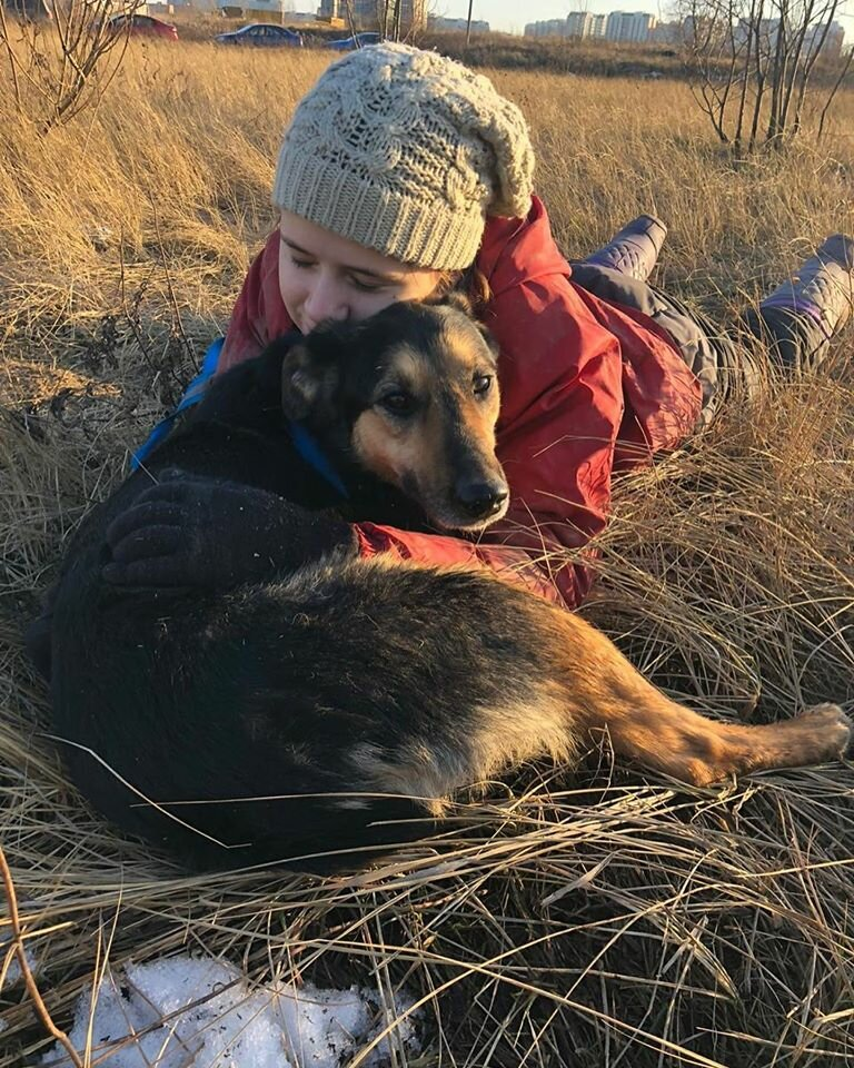 приют для животных — Кожуховский приют для бездомных животных — Москва, фото №2