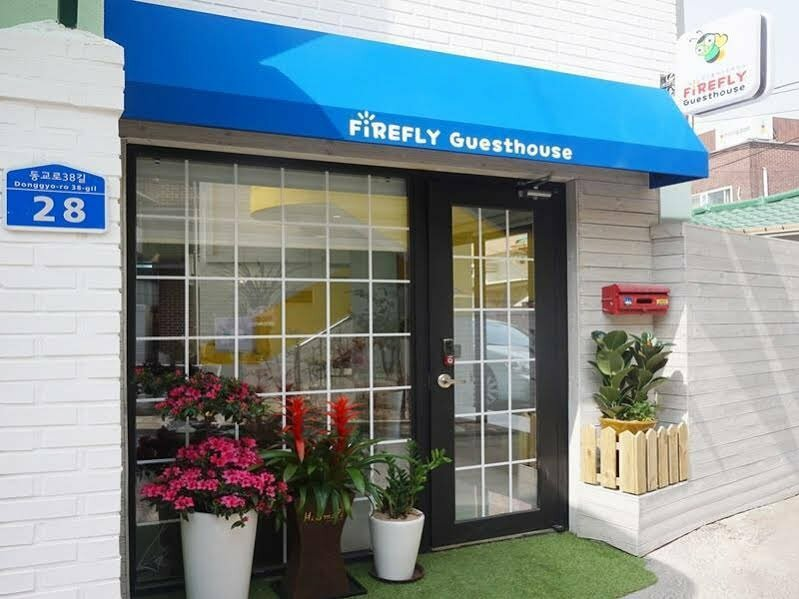 Hongdae Guesthouse Firefly