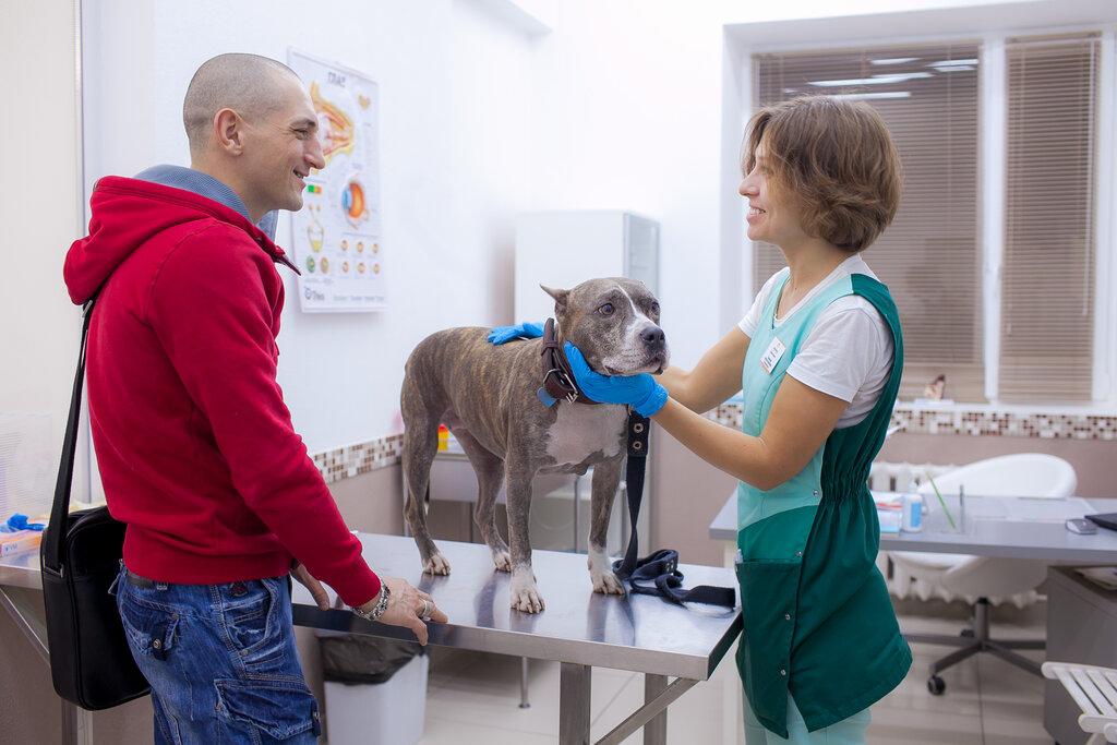 ветеринарная клиника — Биоконтроль — Москва, фото №3