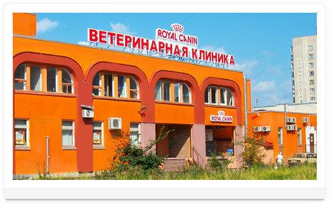ветеринарная клиника — Ветеринарная клиника неврологии доктора Сотникова — Санкт-Петербург, фото №10