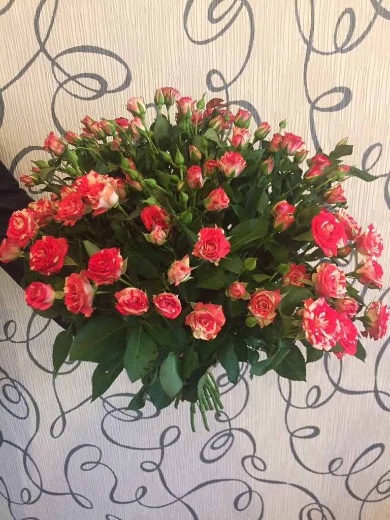 Цветы оптом красногорске, невесты