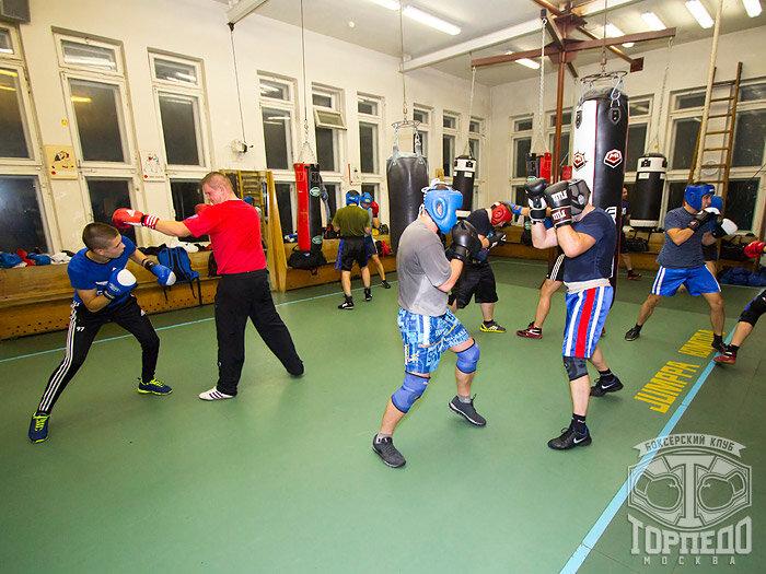Торпедо клуб бокса в москве вход в ночной клуб зефир кемерово