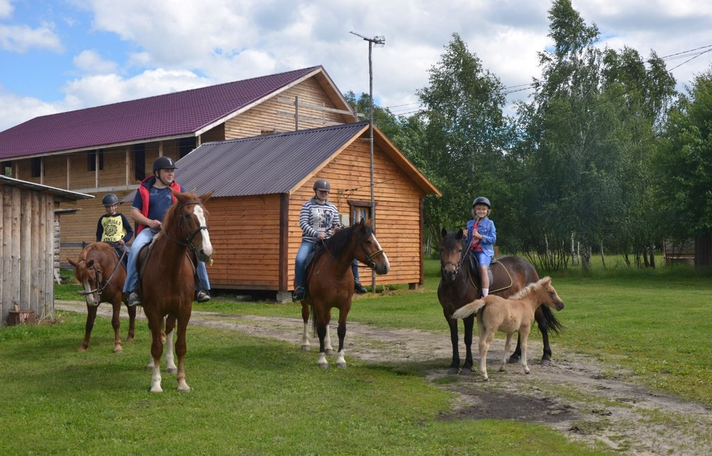 конный клуб — Конная база Добрый Яр — Калужская область, фото №2