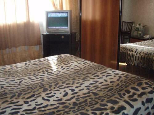 Apartment Velyka Vasylkivska 71