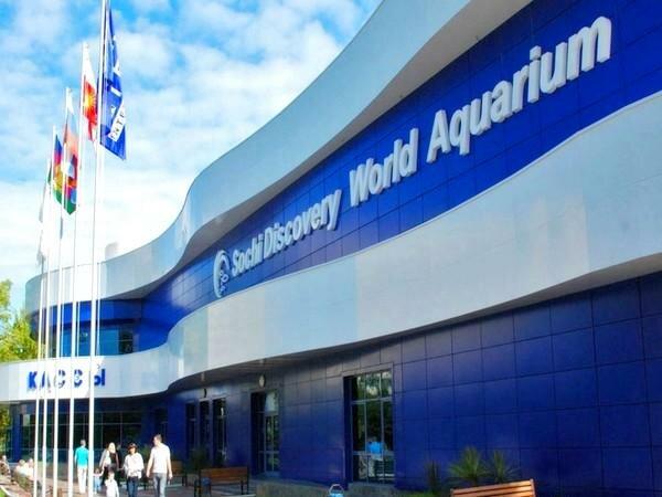 дельфинарий, океанариум — Океанариум Sochi Discovery World Aquarium — Сочи, фото №1