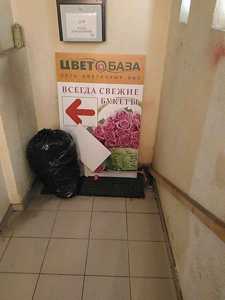 Ромашки стоит, заказать цветы метро профсоюзная