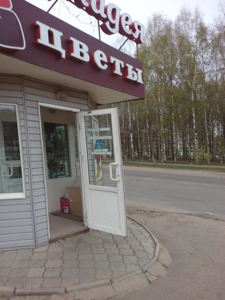 Магазин цветов круглосуточно киров, роз
