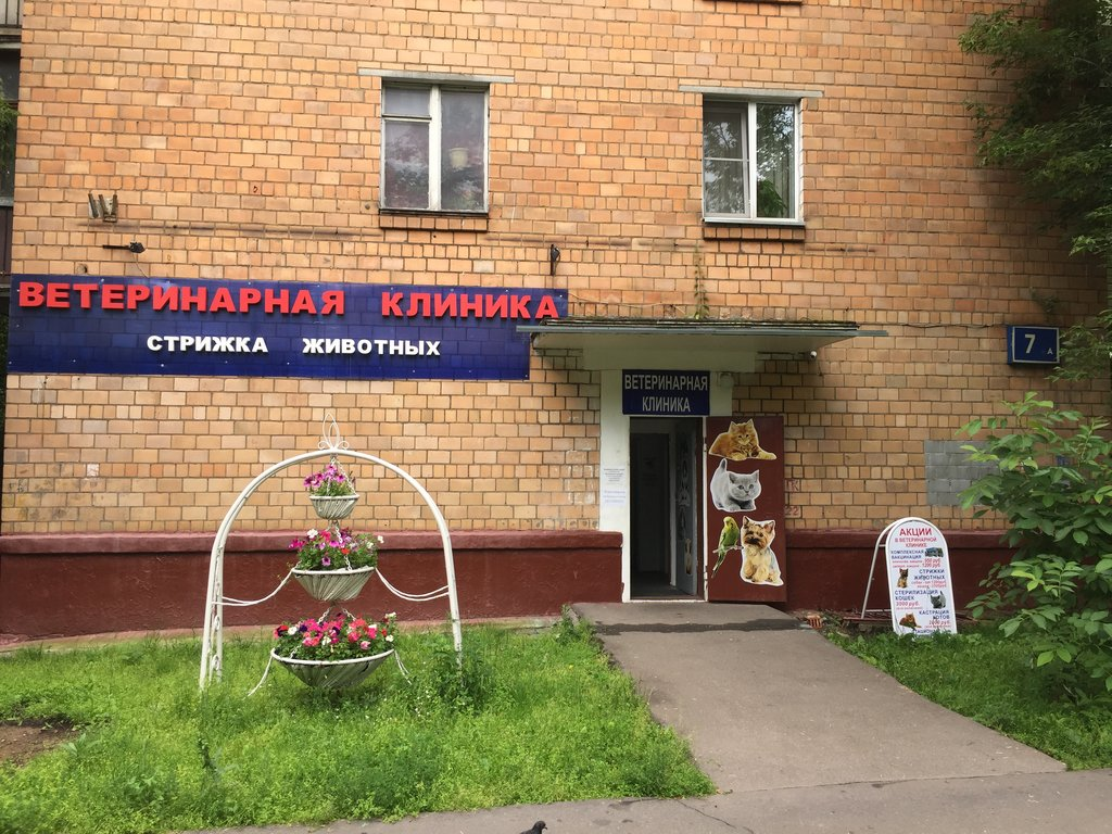 ветеринарная клиника — ВетерОК — Москва, фото №2