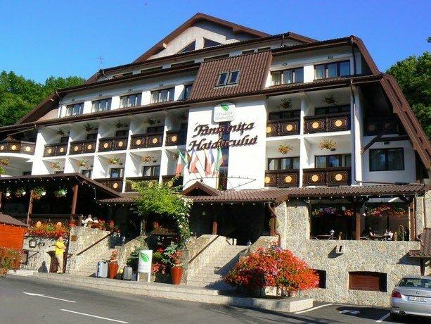 Best Western Hotel Fantanita Haiducului