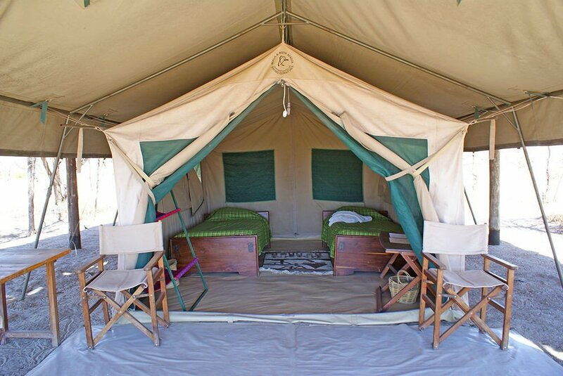 Whistling Thorn Camp