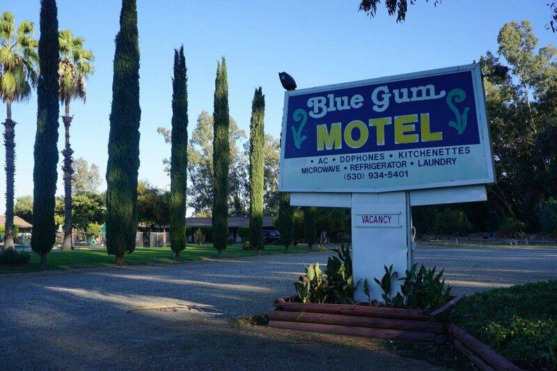Blue Gum Motel
