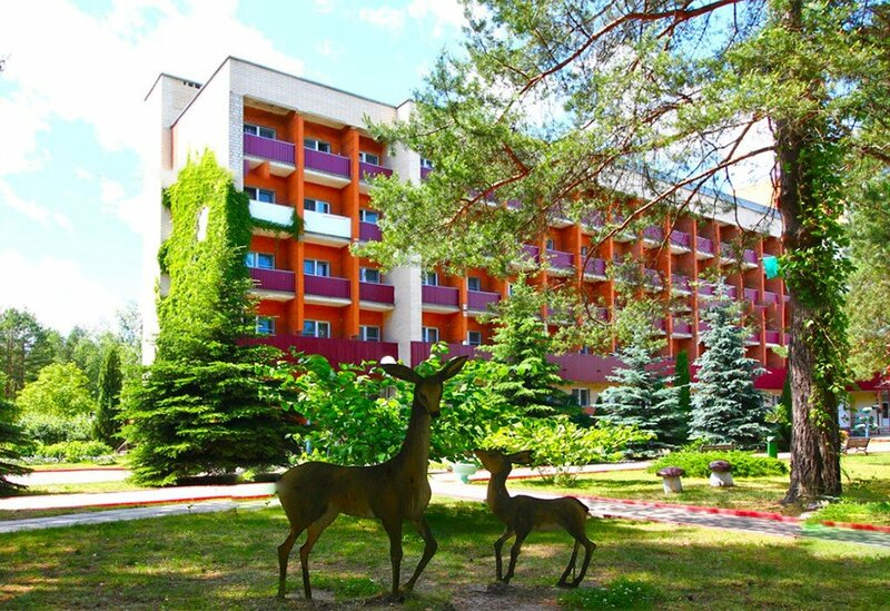 Приднепровский, Гомельская область