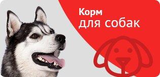 интернет-магазин — Зоовосторг — Москва, фото №2