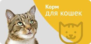 интернет-магазин — Зоовосторг — Москва, фото №1