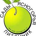 Сады Ясногорья, Услуги дизайнеров в Ясногорске