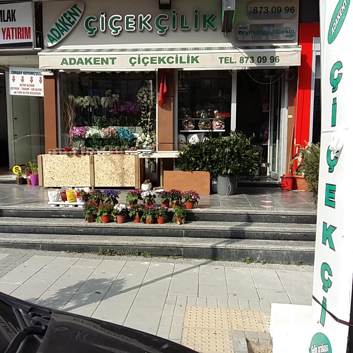 Букетов, доставка цветов стамбул