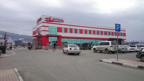 Фортуна авторазборка южно сахалинск