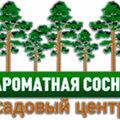 Ароматная сосна, Услуги ландшафтных дизайнеров в Александровском районе