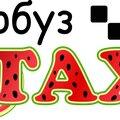 Такси Арбуз, Автомобили в Городском округе Электросталь