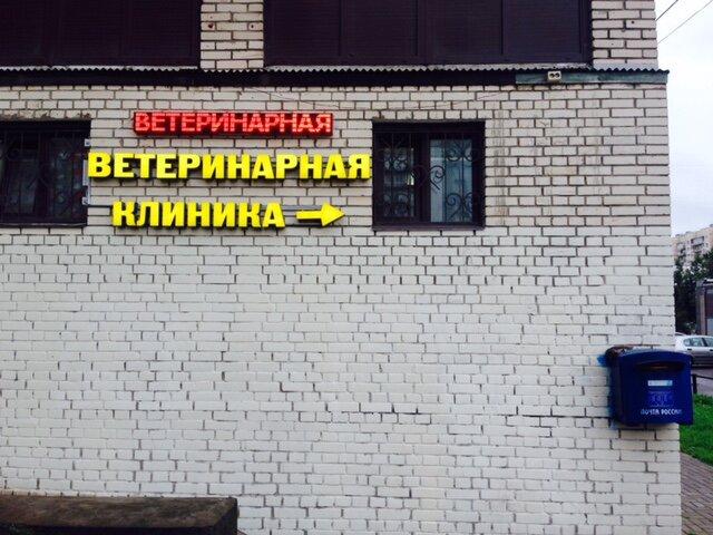 ветеринарная клиника — Ветус — Санкт-Петербург, фото №5