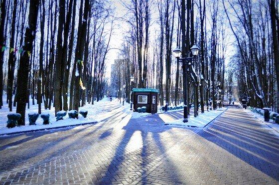 парк культуры и отдыха — Каток с натуральным льдом — Москва, фото №10