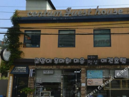 Hi Korea Guest House - Hostel, Caters to Women