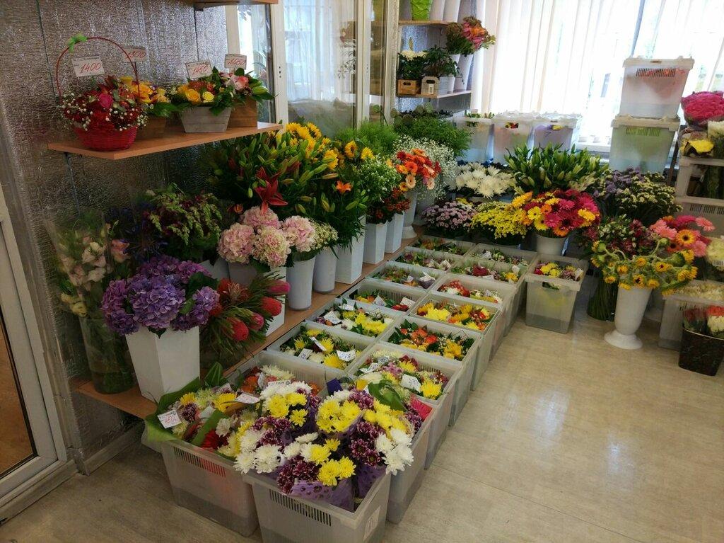 Оптовая база цветов в серпухове режим работы