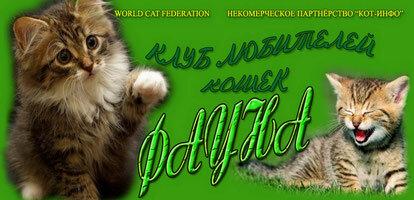 Клуб кошек фауна москва гулянская тамара танцевальный клуб недорогой в москве
