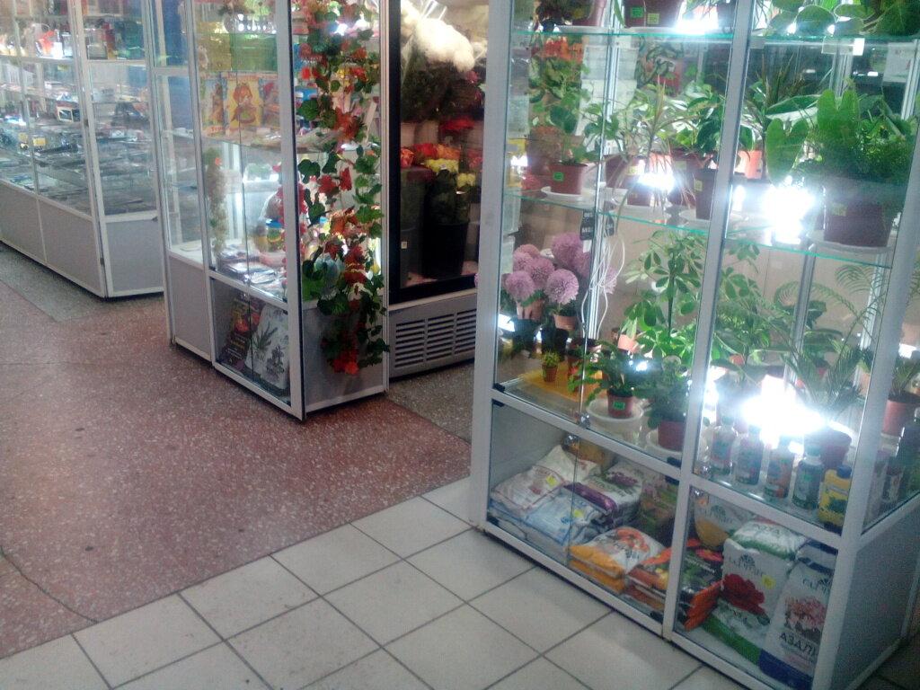 Онлайн магазин цветов в омске, цветов калининграде