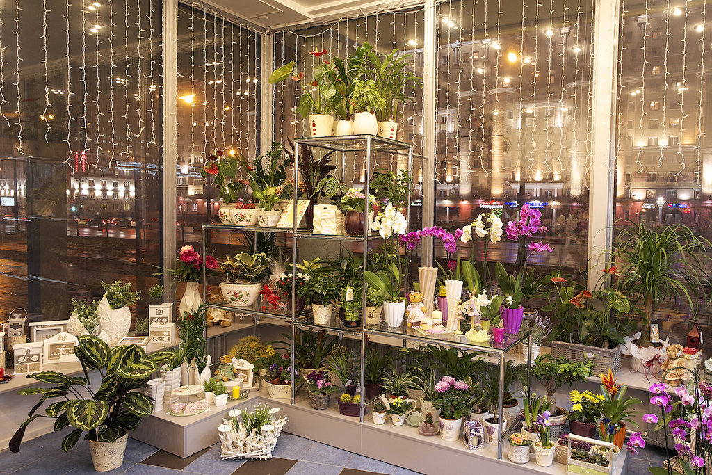 Магазин цветов минск на карте