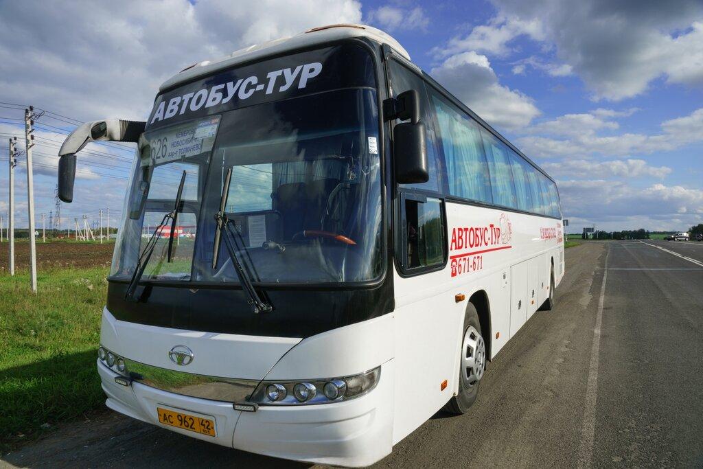Пассажирские перевозки кемерово новосибирск пассажирские перевозки в москву из элисты