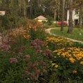 Центр ландшафтных услуг Green Art, Услуги ландшафтных дизайнеров в Иванове