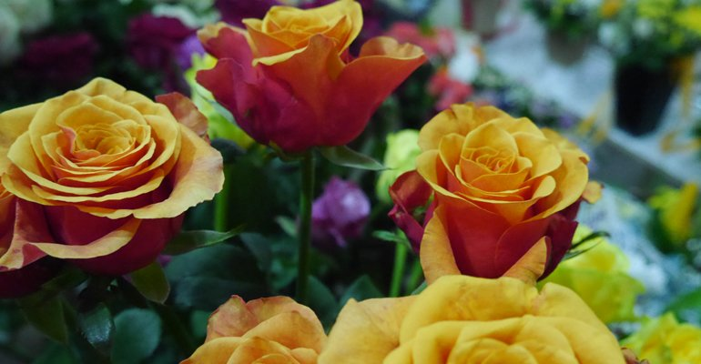 доставка цветов и букетов — Апрель — Новошахтинск, фото №1