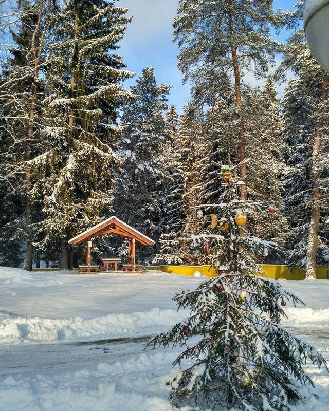 Лесной Берег база Отдыха Forest Beach Recreation Center
