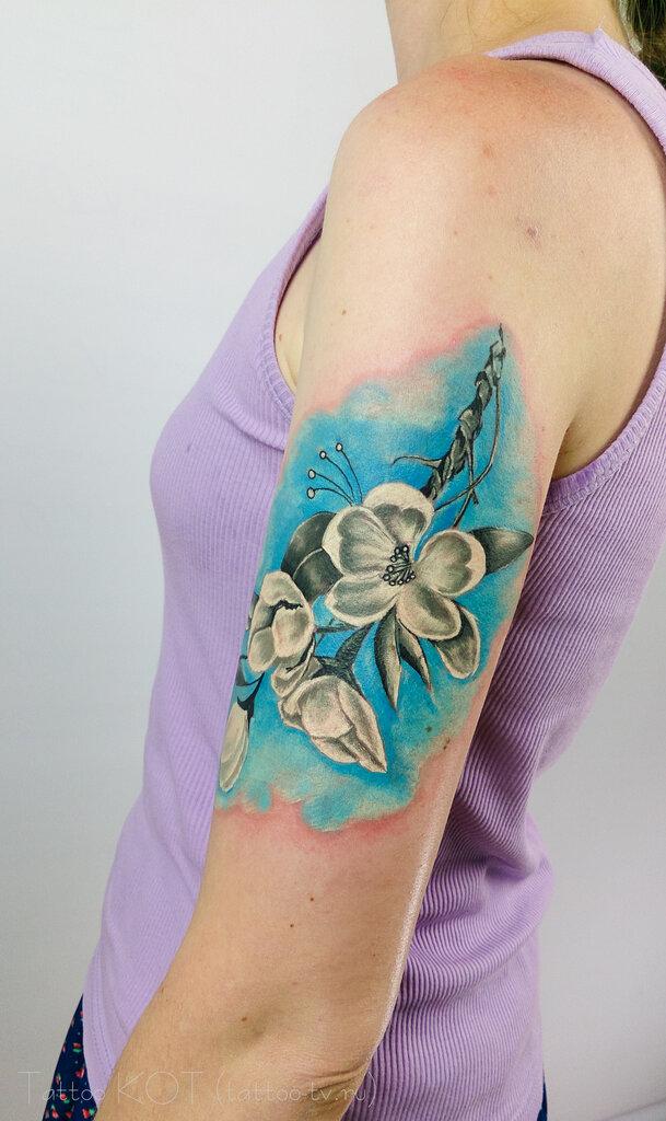 тату-салон — Tattoo Kot. Ink — Солнечногорск, фото №3