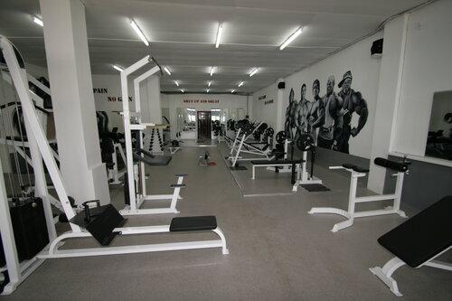 Основные сферы деятельности — это «фитнес-клуб», «спа-салон», «спортивный клуб, секция» и «школа танцев».