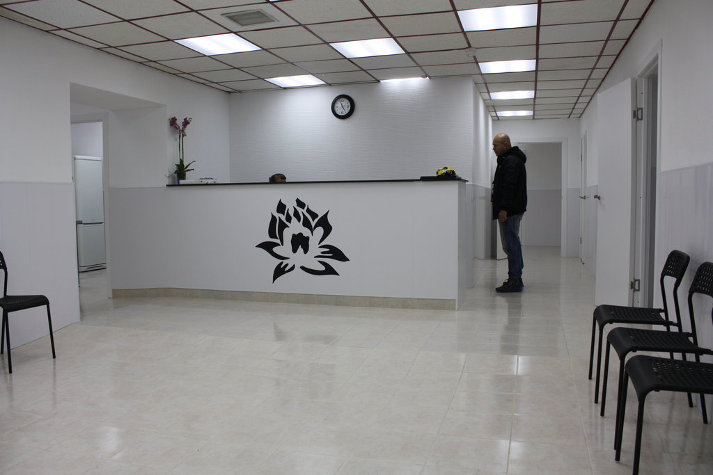 ветеринарная клиника — Клиника ветеринарной стоматологии и пластической хирургии доктора Гиль — Санкт-Петербург, фото №3
