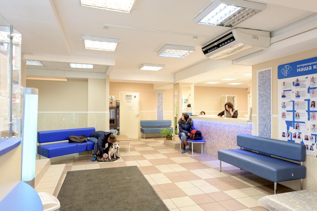 ветеринарная клиника — Городской Ветеринарный Онкологический центр Прайд — Санкт-Петербург, фото №1