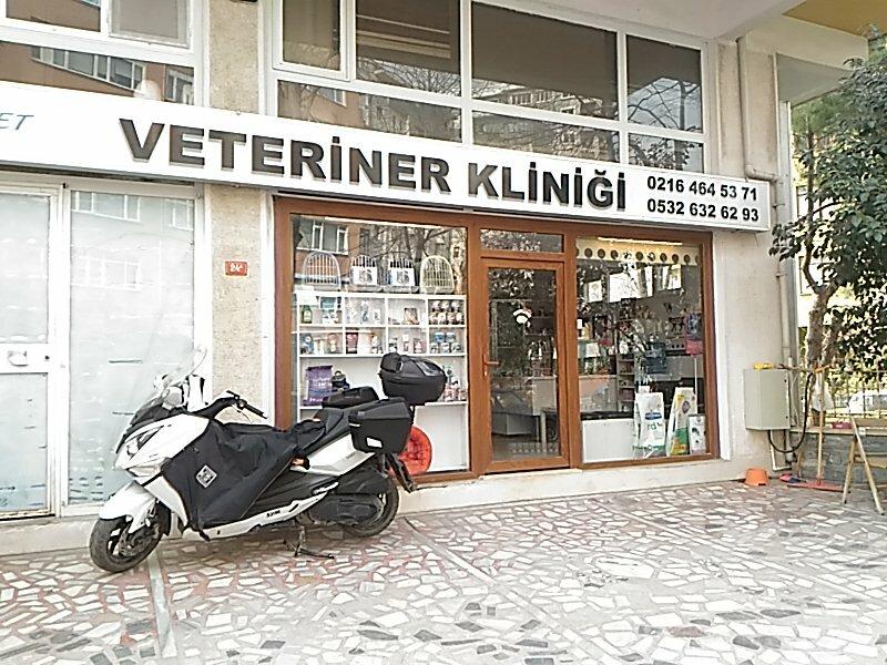 Veterinary clinic My - Vet Veteriner Klinigi, Turkey
