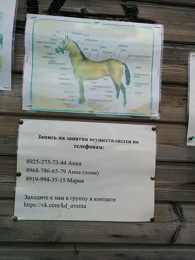 конный клуб на юго западе москвы