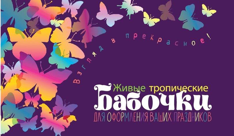 товары для праздника — Живые Бабочки от Амурова — Севастополь, фото №1