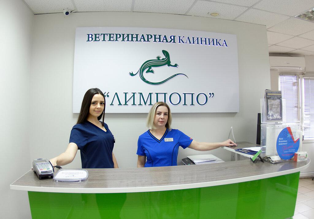 ветеринарная клиника — Ветеринарная клиника Лимпопо — Красноярск, фото №1