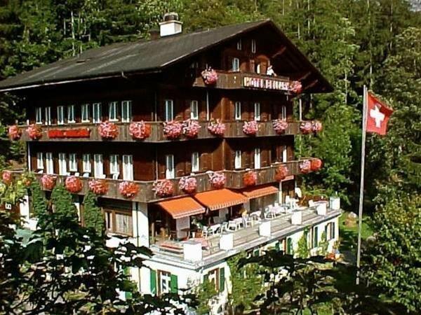 Waldhotel Bellary