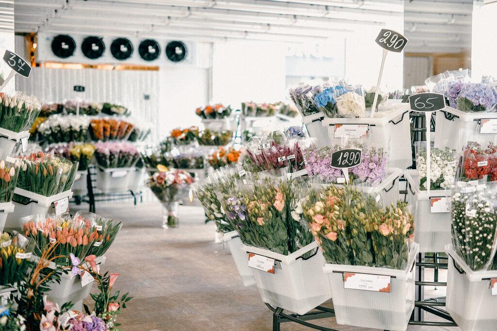 магазин цветов — Мосцветторг — Москва, фото №3
