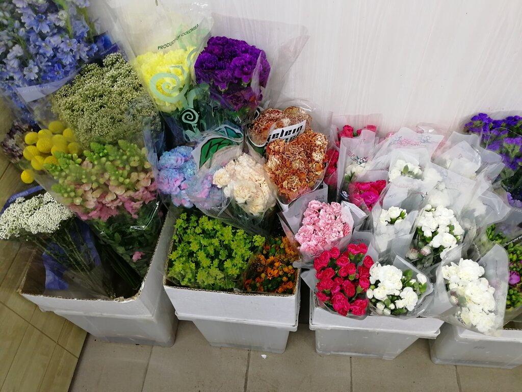 Магазин Цветы Юга