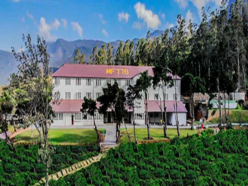 Tea & Experience Factory
