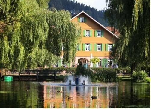 Hotel Zur Alten Muhle