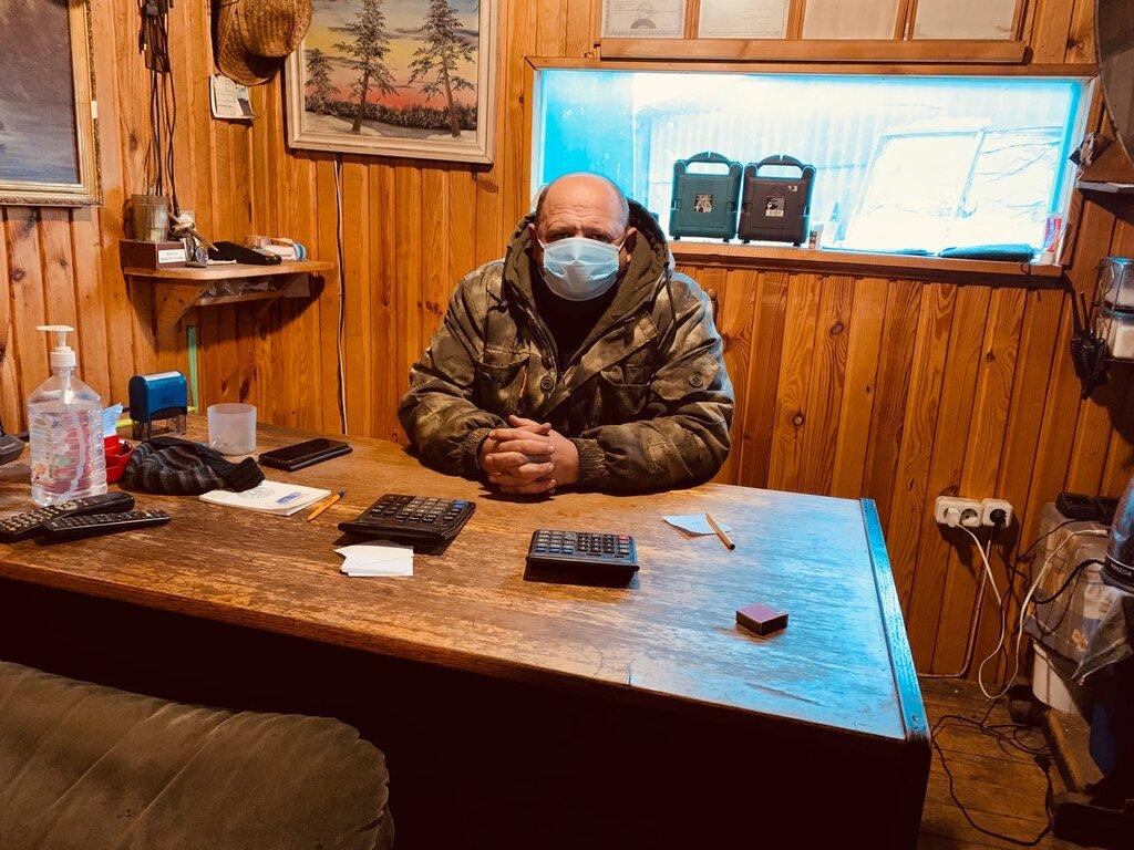 лесозаготовка, продажа леса — Мирнат — Минская область, фото №1