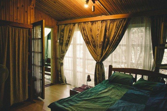 Pura Vida Breeze Hostel